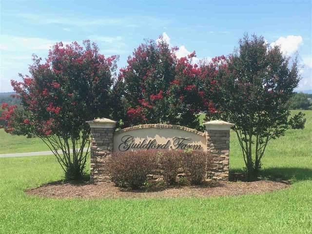 9 Ridgeview Dr #9, RUCKERSVILLE, VA 22968 (MLS #580409) :: KK Homes
