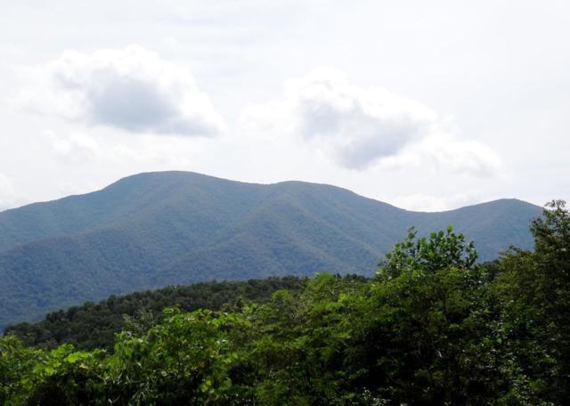 0 Bryant Mountain Rd, Nellysford, VA 22958 (MLS #582535) :: Jamie White Real Estate