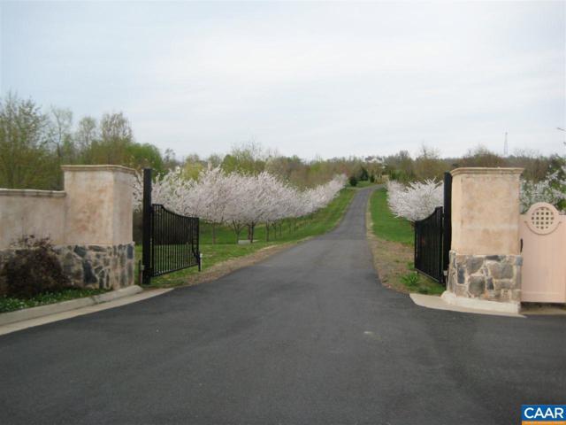16 Glengary Dr, RAPIDAN, VA 22733 (MLS #583805) :: Real Estate III
