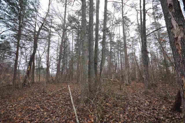 Lot-28 Taylor Ridge Way #28, Palmyra, VA 22963 (MLS #585761) :: Jamie White Real Estate