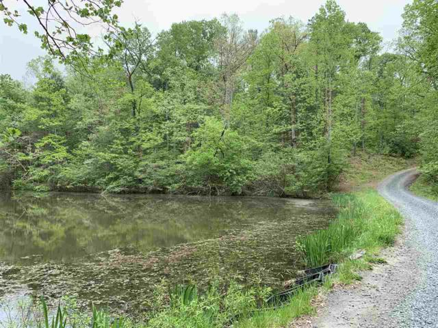 TBD Flint Lake Rd #96, STANARDSVILLE, VA 22973 (MLS #589463) :: Jamie White Real Estate
