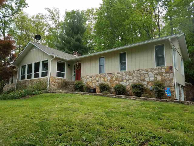 3589 Dundee Rd, STANARDSVILLE, VA 22973 (MLS #589597) :: Real Estate III