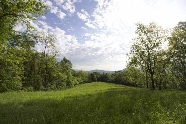 TBD Rockfish Orchard Dr #6, AFTON, VA 22920 (MLS #589957) :: Jamie White Real Estate