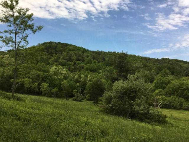 Crabtree Falls Hwy, Montebello, VA 24464 (MLS #591823) :: Real Estate III