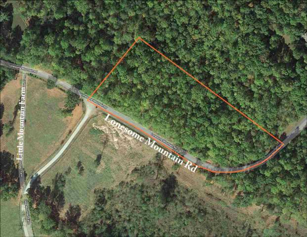 O Lonesome Mountain Rd #12, CHARLOTTESVILLE, VA 22911 (MLS #593160) :: Jamie White Real Estate