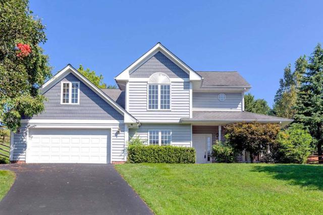 1119 Autumn Hill Ct, Crozet, VA 22932 (MLS #593590) :: Jamie White Real Estate