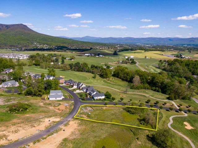 1380 Frederick Rd #197, ROCKINGHAM, VA 22801 (MLS #593896) :: Jamie White Real Estate