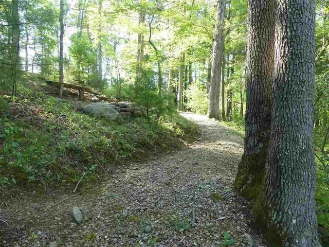 188 Wind River Dr, Rockbridge Baths, VA 24473 (MLS #595614) :: Real Estate III