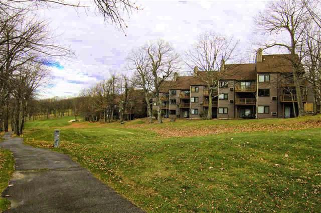2109 Fairway Woods, Wintergreen Resort, VA 22967 (MLS #597996) :: Real Estate III