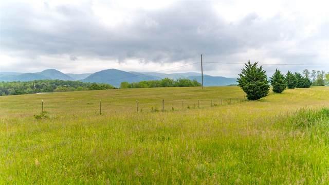 TBD Dabneys Rd, GREENVILLE, VA 24440 (MLS #603878) :: KK Homes