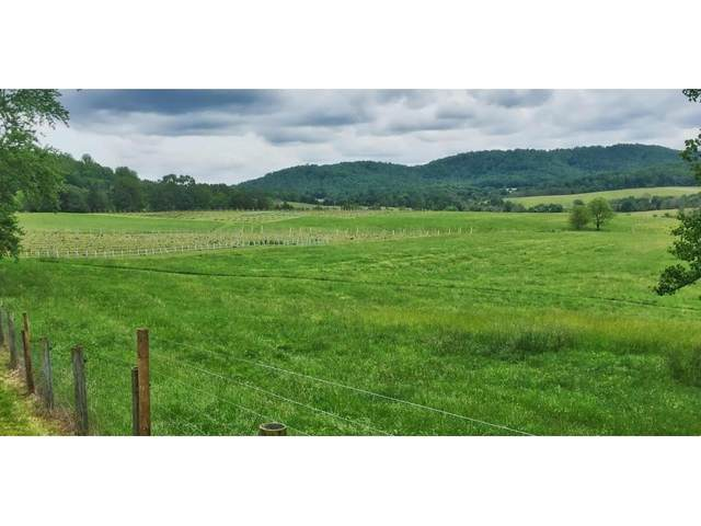 1070 Carpenter Dr, North Garden, VA 22959 (MLS #604490) :: Jamie White Real Estate