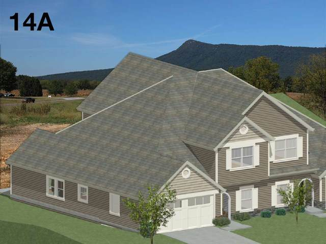 5025 Fox Trot Ln, Mcgaheysville, VA 22840 (MLS #604888) :: Real Estate III