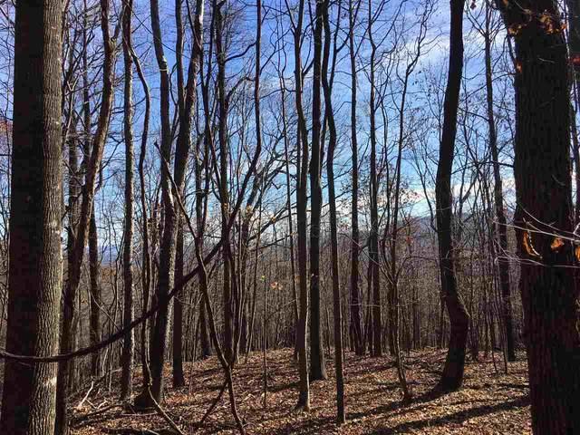 1385 Bryant Mountain Rd, Roseland, VA 22967 (MLS #605246) :: KK Homes