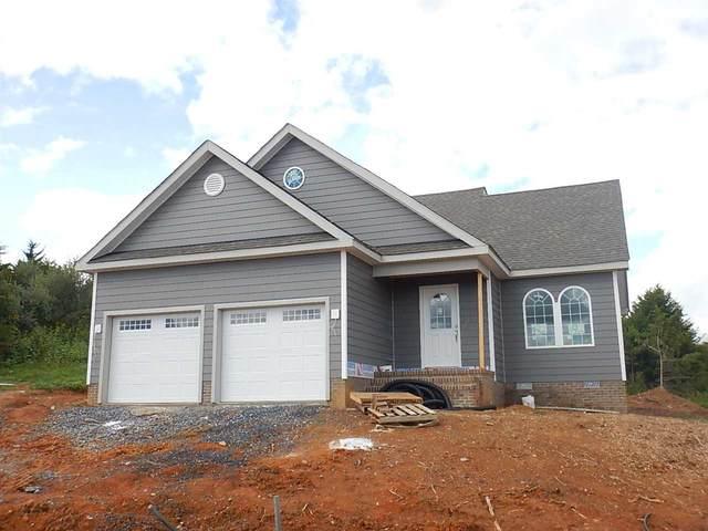 111 Chamberlain Dr, STAUNTON, VA 24401 (MLS #608005) :: Real Estate III