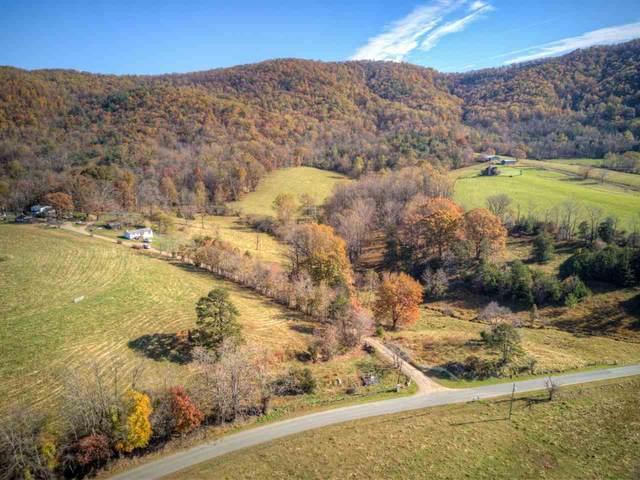 405 Kinderhook Rd, Madison, VA 22727 (MLS #610462) :: Jamie White Real Estate
