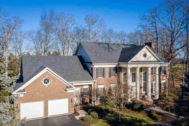 221 Fairway Dr, HARRISONBURG, VA 22802 (MLS #612331) :: KK Homes