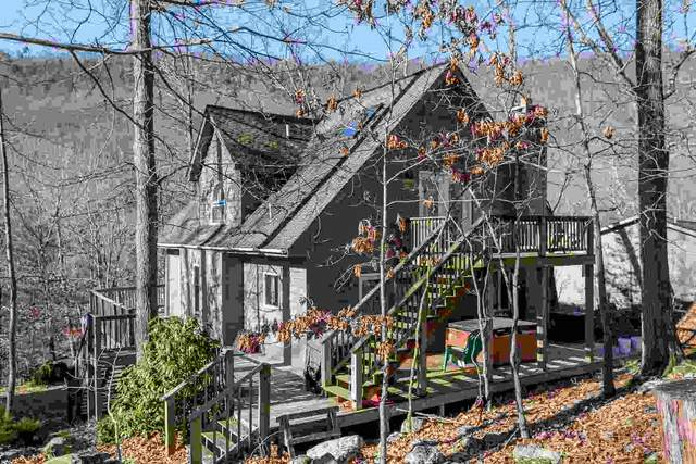 4872 Palmer Rd, Mcgaheysville, VA 22840 (MLS #612527) :: Jamie White Real Estate