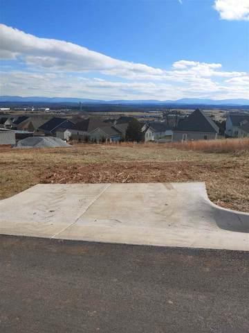 114 Chamberlain Dr, STAUNTON, VA 24401 (MLS #612936) :: Real Estate III