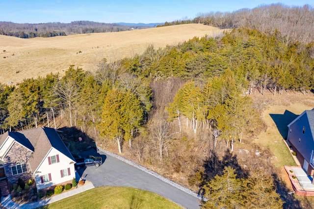 TBD Tanners Ct, ROCKINGHAM, VA 22802 (MLS #614058) :: Real Estate III