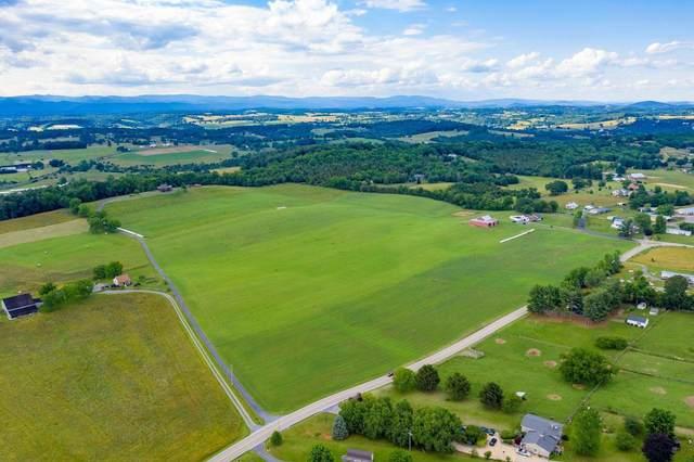 1103  * Quicks Mill Rd, STAUNTON, VA 24401 (MLS #618740) :: KK Homes