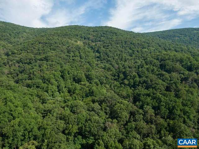 6685 Highlander Way, Crozet, VA 22932 (MLS #619529) :: KK Homes