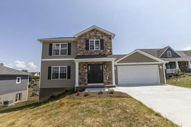 125 Rhodes Hill Dr, Dayton, VA 22821 (MLS #620149) :: Jamie White Real Estate