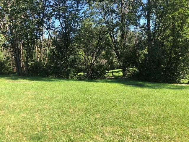 810 Lammermoor Dr, STAUNTON, VA 24401 (MLS #621764) :: Kline & Co. Real Estate