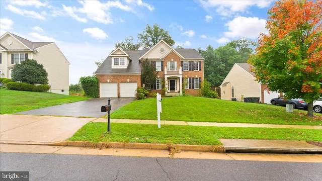 467 Blossom Tree Rd, CULPEPER, VA 22701 (MLS #38195) :: KK Homes