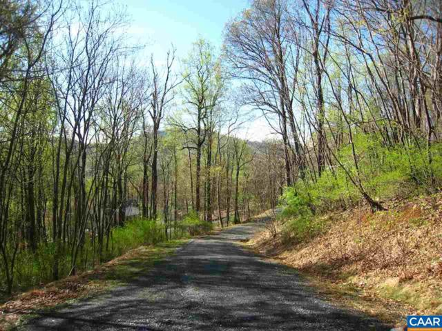 Tree House Pl Lot 42, Nellysford, VA 22958 (MLS #530643) :: Jamie White Real Estate