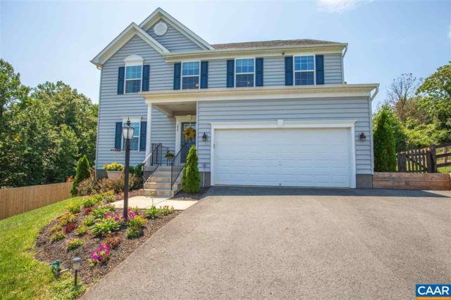 252 Ridgemont Rd, RUCKERSVILLE, VA 22968 (MLS #580216) :: Real Estate III