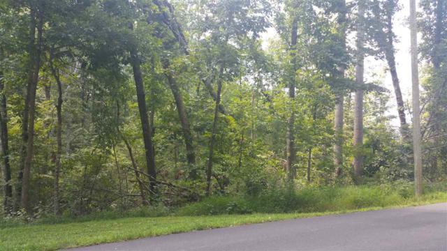 0 Jonquil Rd N6, RUCKERSVILLE, VA 22968 (MLS #580745) :: Jamie White Real Estate