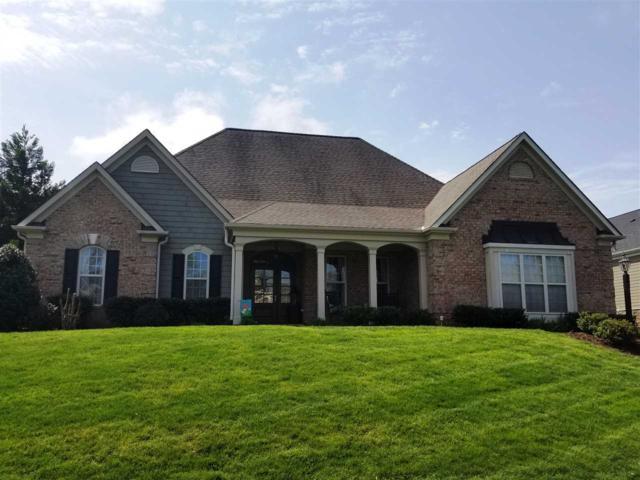 65 Blue Ridge Ter, GORDONSVILLE, VA 22942 (MLS #587443) :: Jamie White Real Estate