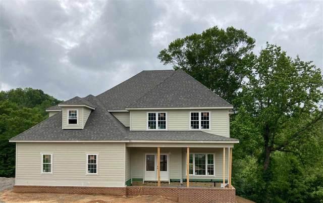 14 Riley Way, CHARLOTTESVILLE, VA 22903 (MLS #588111) :: Real Estate III