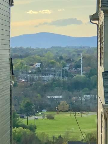 1521 Delphi Ln, CHARLOTTESVILLE, VA 22911 (MLS #601920) :: Jamie White Real Estate