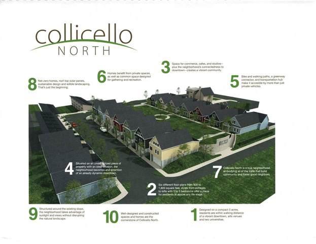 TBD Collicello St, HARRISONBURG, VA 22801 (MLS #609088) :: KK Homes