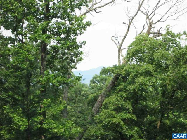 Lot 43 Tree House Pl, Nellysford, VA 22958 (MLS #533418) :: Strong Team REALTORS
