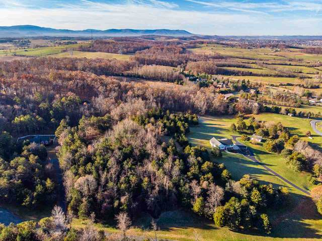 TBD Hermitage Estates Rd, WAYNESBORO, VA 22980 (MLS #598092) :: Jamie White Real Estate