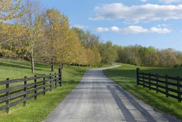 258 Harrison Dr, Raphine, VA 24472 (MLS #602394) :: Real Estate III