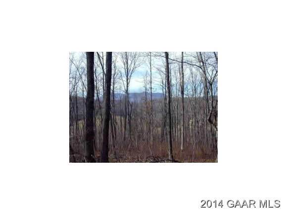 TBD Deer Dr, LEXINGTON, VA 24450 (MLS #181362) :: Real Estate III