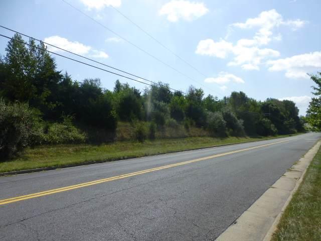 Bridge Ave, WAYNESBORO, VA 22980 (MLS #535323) :: Real Estate III