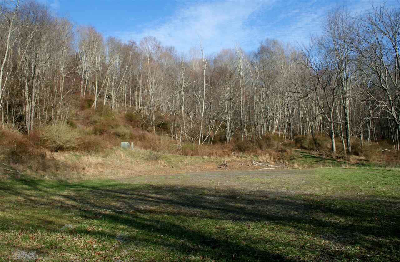 Lot 9 Low Hills Jackson River Rd - Photo 1