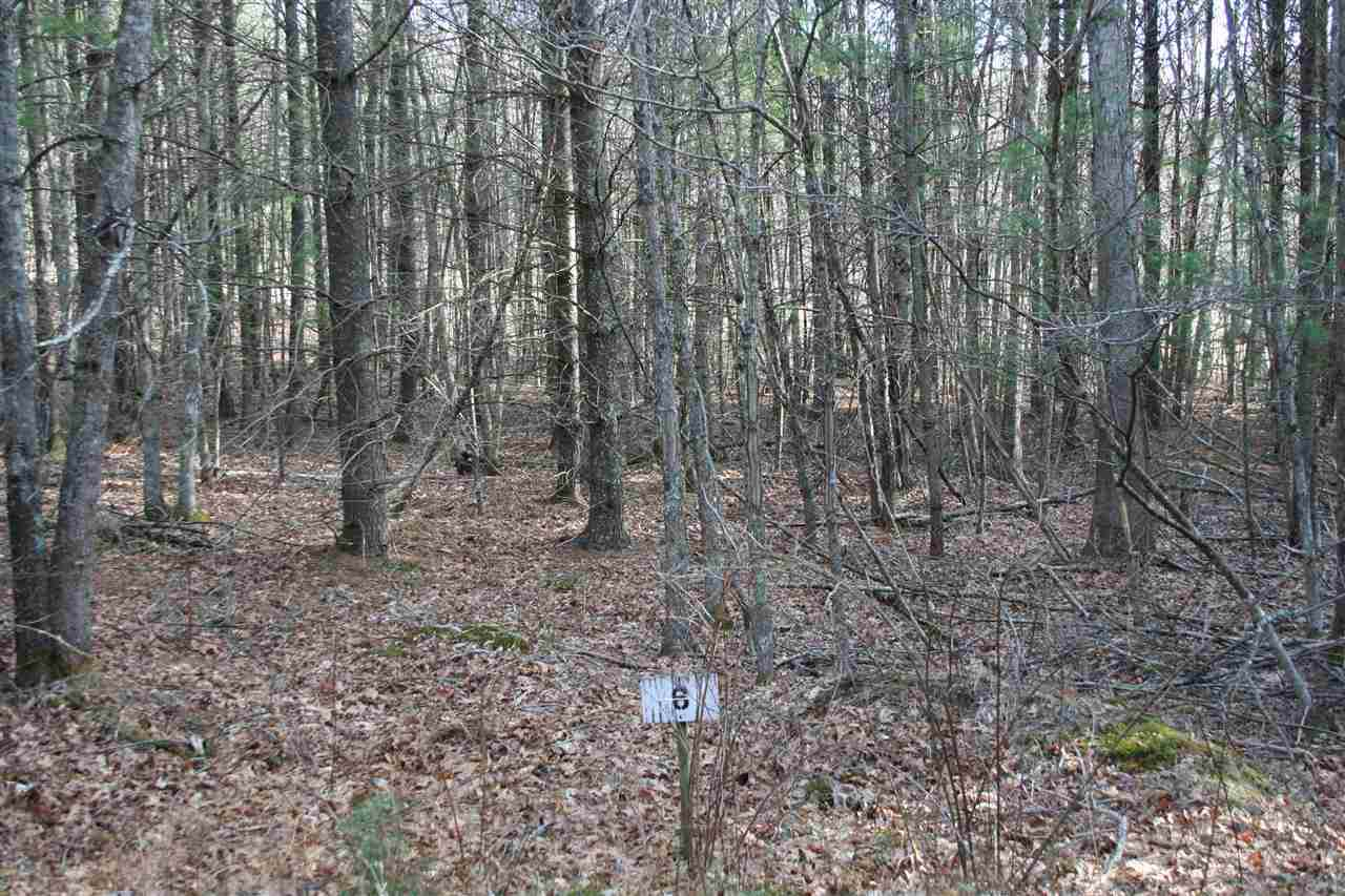 Lot 6 Low Hills Jackson River Rd - Photo 1