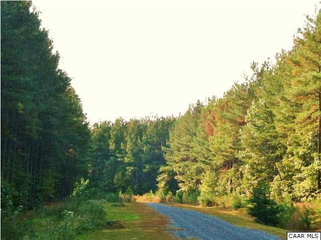 1 Old Forest Dr, Palmyra, VA 22963 (MLS #589769) :: Jamie White Real Estate