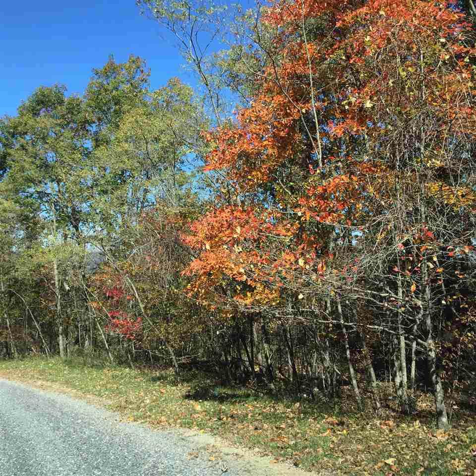 Lot 20 Peaksview Dr - Photo 1