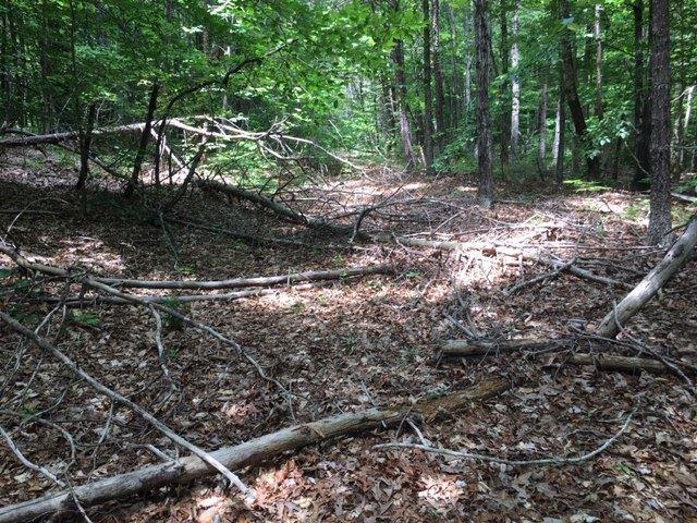 385 Piney Mountain Ln, Shipman, VA 22971 (MLS #591125) :: Jamie White Real Estate