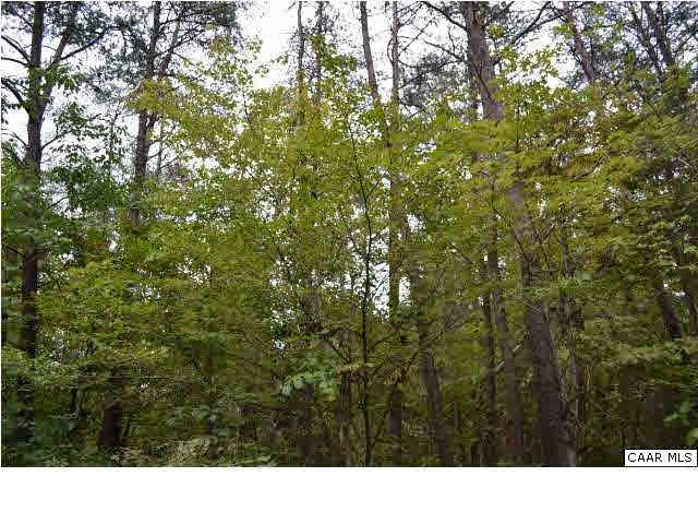 LOT 111 William Monroe Trl Lot 111, STANARDSVILLE, VA 22973 (MLS #591566) :: Jamie White Real Estate