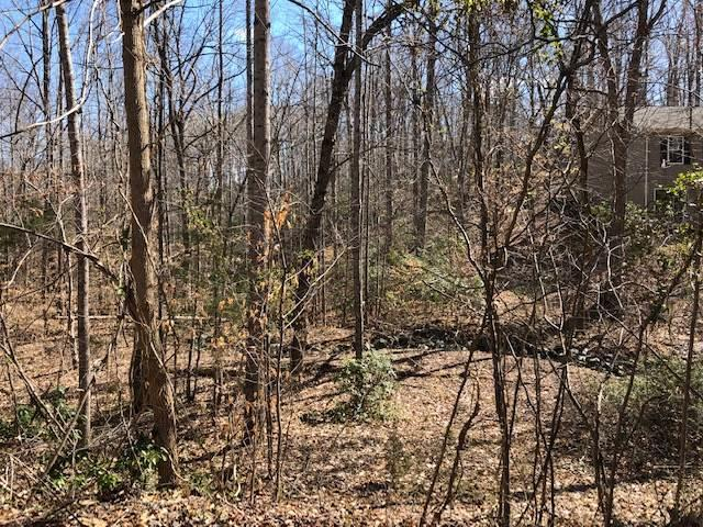 Lot 29 Arapaho Trl Cheroke-10 Lot , Palmyra, VA 22963 (MLS #591938) :: Jamie White Real Estate