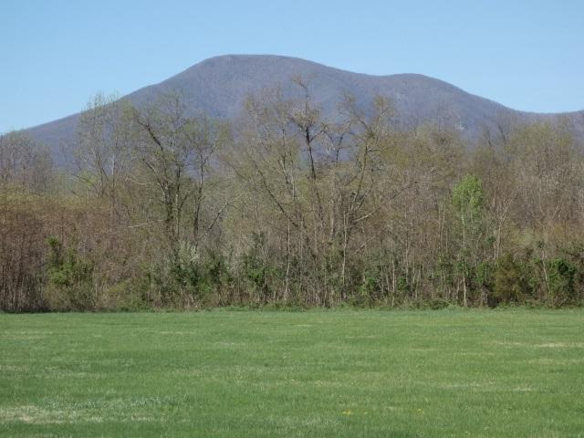3 Phillips Ln, Nellysford, VA 22958 (MLS #593451) :: Jamie White Real Estate