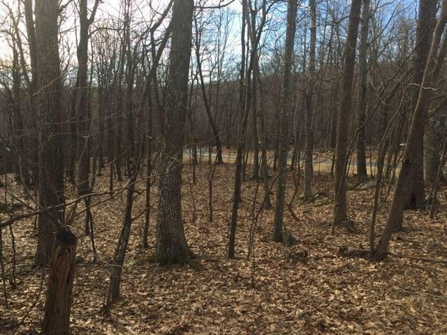 149 Timber Camp Dr, WINTERGREEN, VA 22958 (MLS #594179) :: Real Estate III