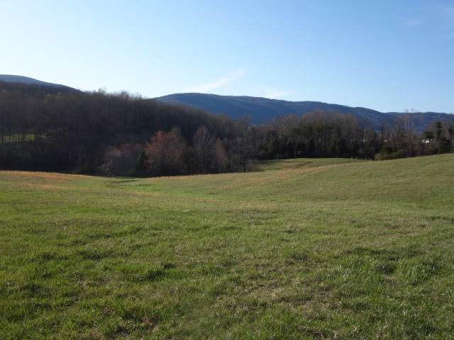 0 Rockfish Orchard Dr, AFTON, VA 22920 (MLS #595602) :: Real Estate III